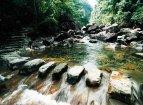 瑞安花岩国家森林公园在头桥路