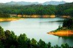 瑞安花岩国家森林公园风